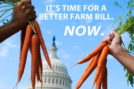 Farm-Bill-Petition-Opening-Graphic-Alert-Image-Web